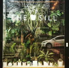 A selfie in The Sill shop window! Visit us at 84 Hester Street, in NYC.