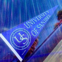 Best university EVER #university #college #beachschool #islandlife #islandgirl #beachbum #saltair #saltlife #paradise #beachbabe #sanibelstar #oceanlove #captiva #sanibelisland #captivaisland #sanibel