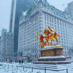 The Plaza Hotel NewYork City Places To Travel, Places To See, New York Winter, Nyc Hotels, New York Christmas, Xmas, New York City Travel, Plaza Hotel, Dream City