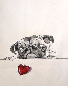 Sale 50 off Pug portrait original drawing by katarinathorsen, $50.00