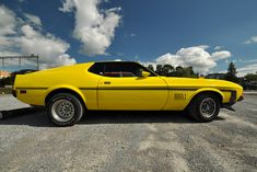 Classic Cars – Old Classic Cars Gallery 1971 Mustang Mach 1, Ford Mustang Shelby Cobra, Mustang Fastback, Mustang Gto, Car Man Cave, Old Classic Cars, Pony Car, American Muscle Cars, Cute Photos