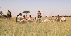 #africanluxury #keepdiscovering #eyeswildopen #travel #traveltip #luxurytravel #traveltheworld #tanzania #africa #travelagency #letsgo Okavango Delta, Travel Agency, Tanzania, Luxury Travel, Lodges, Letting Go, Safari, Travel Tips, African