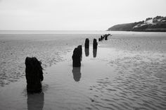 Nice in black and white too Cliff House Hotel, Black And White, Nice, Beach, Water, Outdoor, Black White, Water Water, Outdoors