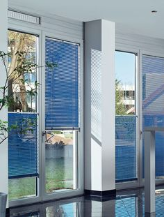 Blue venetian blinds on four Tilt & Turn doors. Blinds can be lowered at the top or raised at the bottom. Casement Windows, Windows And Doors, Window Coverings, Window Treatments, Tilt And Turn Windows, San Francisco, Horizontal Blinds, Window Sizes, Outdoor Shade