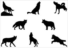 A special set of wolf silhouette vectors ideal for wildlife vector illustrations also animal vector illustrations.