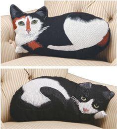 Plush Cat Pillow - http://www.whatonearthcatalog.com/cgi-bin/hazel.cgi?action=DETAIL&ITEM;=CH8432