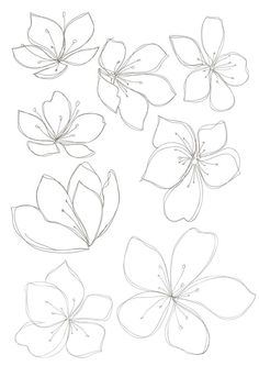 new Ideas flowers drawing design new Ideas flowers drawing design plants Cherry sakura blossom floral seamless pattern Vector Image Bobbie Print: Flower drawings - - Drawing Step By Step Butterfly Tutorials 43 Ideas Spring cherry blossom wallpaper Flower Pattern Drawing, Floral Drawing, Drawing Flowers, Flower Drawings, Flower Drawing Tutorials, Flowers To Draw, Flower Design Drawing, How To Draw Flowers Step By Step, Hibiscus Flower Drawing
