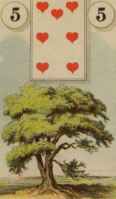 Lenormand  - Tree