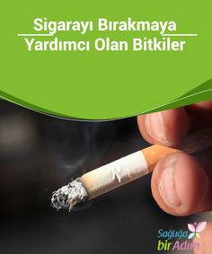 Would you like to give up your smoking addiction once and for all? Giving up smoking is not easy, and it requires a Help Quit Smoking, Giving Up Smoking, Feeling Stressed, How Are You Feeling, Health Tips, Health And Wellness, Smoking Addiction, Withdrawal Symptoms, Smoking Cessation