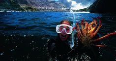 An amazing activity to do when on your adventure holiday in New Zealand