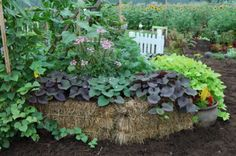 Create a completely green container by using four bales of straw to make an empty space which you can fill with compost and then plant on top of the bales with herbs to create a garden space. As the bales break down you  just compost everything or use the straw as mulch!