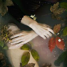 Monia Merlo - water in leaves