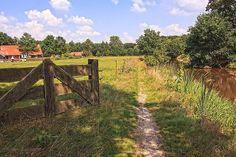 Charmant Westerwolde is hét wandelgebied van het Noorden met vele prachtige wandelroutes. Wandel door de rijke natuur en de geschiedenis van Nederland!