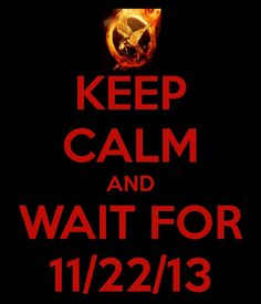 How can one keep calm AND wait for Catching Fire?! I'm already dying with anticipation!