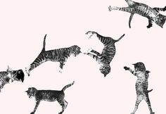 the cat's meow. Crazy Cat Lady, Crazy Cats, I Love Cats, Cat Art, Neko, Cats And Kittens, Fur Babies, Things That Bounce, Cat Lovers