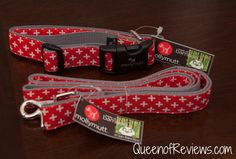 molly mutt Great Expectations Collar and Leash