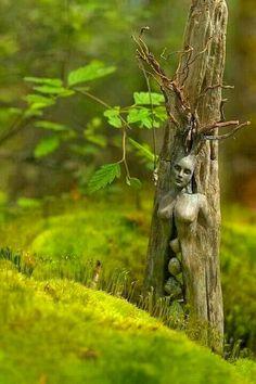 Arte con la naturaleza,inmersa en la vida.......