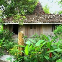 This is our main house, Joglo Gumuk. This small, charming historical wooden house is situated with a beautiful view over rice fields. Located on the edge of a small village, it offers a perfect mix of living in tropical nature with fast access to the city center of Yogyakarta.  #airbnb #rumahgladak #joglogumuk #woodenhouse #tropicalhouse #tropicalgarden #garden #house #bamboo #leisuretime #relax #travel #adventure #trip #holiday #ricefield #yogyakarta #indonesia #guesthouse #home