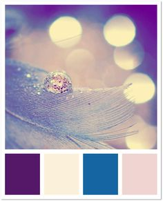 Color Inspiration - Purple & White awesome.