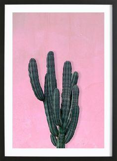 Kaktus en Affiche premium encadrée par typealive | JUNIQE