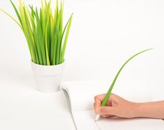 We Need These Cutsie Pot of Grass Pens In Our Lives. http://www.kctech-maxpro.com
