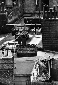 Woman reading on roof, 1965 ©andré kertész, fromon reading:andré kertész