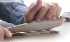 Filleting Trick
