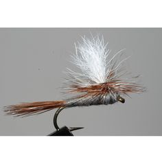 The Adams Parachute Dry Fly is growing in popularity in sizes 16 & 18 on tail water streams when there are a variety of naturals hatching but none that is especially heavy. The broad use of this patte