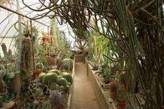 Moorten Botanical Gardens for ceremony