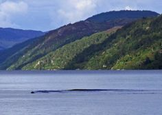 Nessie? The photograph showing a 'solid object' under the water of Loch Ness. Picture: David Elder/KNS News