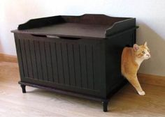 Designer Catbox, Pet Furniture Cat Litter Box Hidden