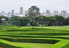 7 passeios incríveis para fazer em Curitiba