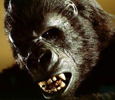 Rick Baker (#King Kong)