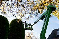 Tuinonderhoud in wassenaar, snoeien van coniferen met hoogwerker