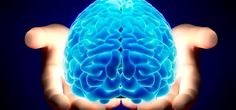 Brain Death: Resuscitation Medicine Claims Evidence of Consciousness After Death - Guardian Liberty Voice Fun Christmas Party Ideas, Christmas Fun, What Does It Say, Brain Facts, Science Facts, Love Your Enemies, Spiritual Meaning, Psychology Facts, Vitamins