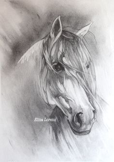 Grey Horse- Original Drawing-Room Decor- Horse Art- Decorative art- Art Gift-White and Grey-Room Decor- Christmas Gift Horse Drawings, Animal Drawings, Art Drawings, Painted Horses, Horse Sketch, Amazing Drawings, Equine Art, Horse Pictures, Western Art