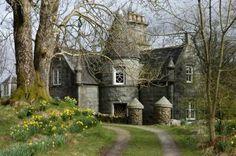 The Buchan in Glentrool