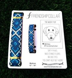 Matching dog collar/friendship bracelet. Not ashamed of wanting this.