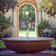 fountain and gardens at Stanford University