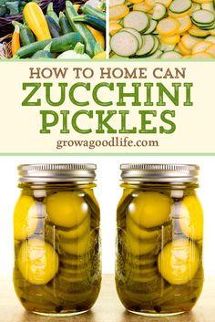 Canned Zucchini, Zucchini Pickles, Pickled Zucchini, Recipes With Zucchini, Canning Food Preservation, Preserving Food, Preserving Zucchini, Canning Pickles, Pickles Recipe