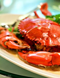 Chinese Steam Crab with ginger and green onions
