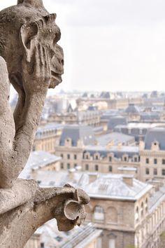 Una de las enigmáticas gárgolas de Notre Dome contempla pensativa la ciudad