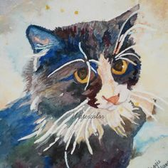 Best Cat Watercolor Paintings Products on Wanelo