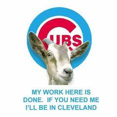 Chicago Memes                                                                                                                                                                                 More