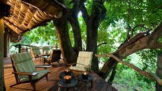 lake-manyara-tree-lodge-4.jpg
