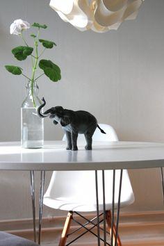 Geranium in a bottle + a big elephant.