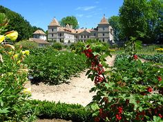 Château de Prangins kicks off anniversary celebrations with appeal for 500 volunteers! Youth Club, Winter Activities, 20th Anniversary, Night Life, Playground, Swimming Pools, Have Fun, Kicks, Mansions