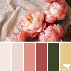 today's inspiration image for { flora hues } is by @wanderforawhile ... thank you, Kathryn, for another gorgeous #SeedsColor image share!