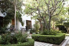 Taming a Wild Hollywood Garden