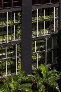 An Unexpected Hanging-Garden   Singapore   AgFacadesign & Tierra Design « World Landscape Architecture – landscape architecture webzine